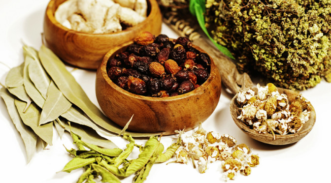 Ayurveda Practitioners