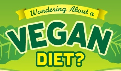 vegan diet review