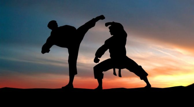 Styles of Martial Arts