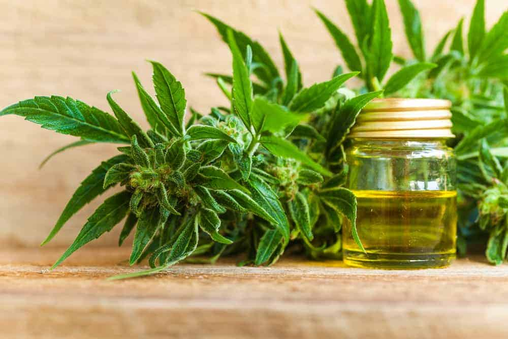 one-step-closer-cbd-oil
