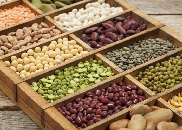 Why Plant Based Protein is the Best Kind