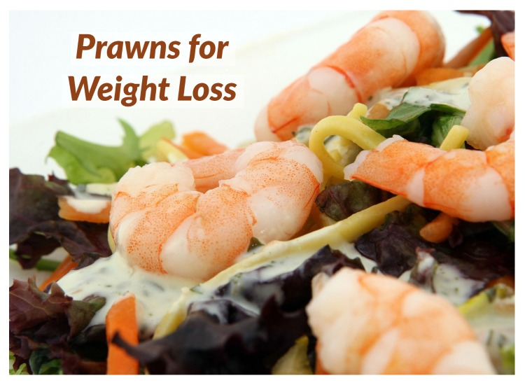 Prawns for Weight Loss